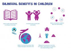 infographic bilingual kids